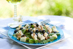 Spinach And Grogonzola Cheese Salad Stock Image