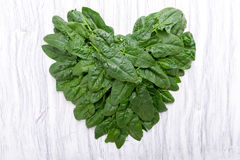 Spinach in heart shape Stock Images