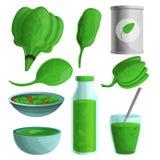 Spinach icon set, cartoon style royalty free illustration