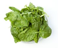 Spinach isolated on white Royalty Free Stock Photos