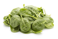 Spinach isolated on the white background. Royalty Free Stock Photography