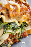 Spinach Lasagne Royalty Free Stock Photos