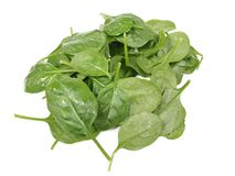 Spinach leaf pile, isolated Stock Image