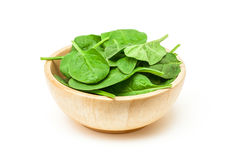 Spinach leaf in wooden bowl isolated on white background Stock Photos