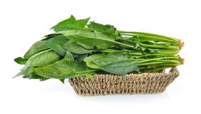 Spinach leaves in basket Royalty Free Stock Photography