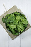 Spinach Leaves in a Bowl Royalty Free Stock Images