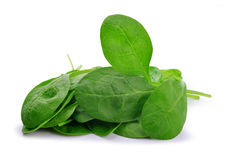 Spinach leaves close up Royalty Free Stock Photos