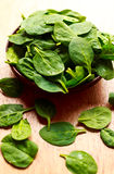 Spinach Leaves Royalty Free Stock Photography