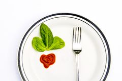 Spinach leaves and a fork on a plate Stock Images