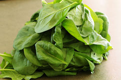 Spinach leaves. Fresh spinach leaves on the board. Prepared for next use in the kitchen royalty free stock photo