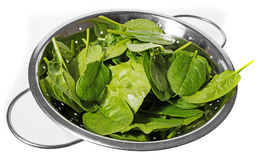 Spinach leaves. Green fresh raw spinach leaves Stock Photo