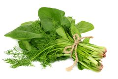 Spinach leaves isolate on white background. Healthy food. stock photography