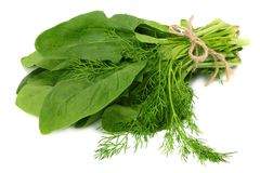 Spinach leaves isolate on white background. Healthy food. royalty free stock photo