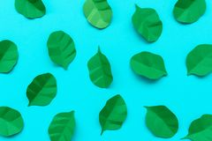 Spinach leaves made from paper on blue background. Minimal, creative, vegan, healthy or food art concept. Flat lay. Top view.  stock photography