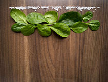 Spinach. Leaves and sea salt on a wooden table Royalty Free Stock Images