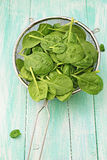 Spinach leaves in strainer Royalty Free Stock Photo