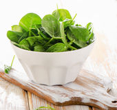 Spinach leaves in white bowl. Stock Photography