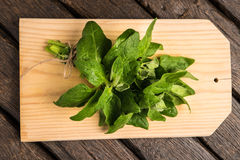Spinach leaves on a wooden background Stock Photo