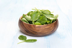 Spinach leaves in a wooden plate Royalty Free Stock Image