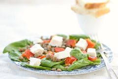Spinach and lentil salad Stock Photos