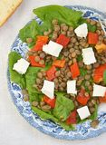 Spinach and lentil salad Royalty Free Stock Photo