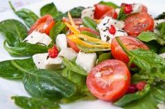 Spinach lettuce Stock Photos