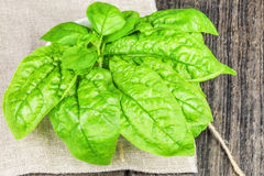 Spinach on linen Stock Images