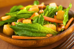 Spinach Mango Carrot Salad Stock Image