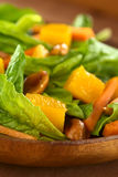 Spinach Mango Carrot Salad Royalty Free Stock Image