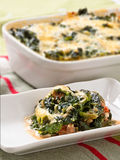 Spinach Minced Meat Bake Stock Photo