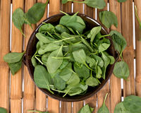 Spinach organic baby leaves. In berry bowl on bamboo table Stock Image