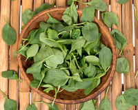 Spinach organic baby leaves. In wooden bowl on bamboo table Stock Image