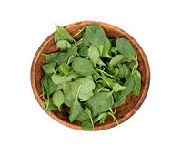 Spinach organic baby leaves. In wooden bowl isolated on white background Stock Images