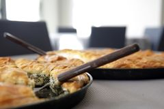 Spinach pie  nad Cheese pie on pan. Traditional greek Cheese pie and spinach pie in pan Stock Images
