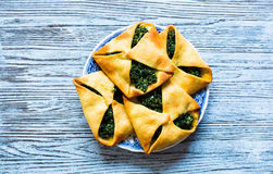 Spinach pie with ricotta cheese Royalty Free Stock Photo