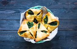Spinach pie with ricotta cheese Stock Photography