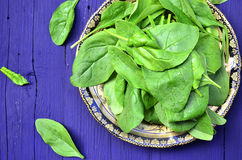Spinach on the plate. Royalty Free Stock Images