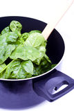 Spinach in a pot. Fresh spinach leaves being prepared in a cooking pot royalty free stock photos