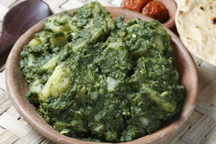 Spinach and Potatoes subzi with roti from India Royalty Free Stock Photo