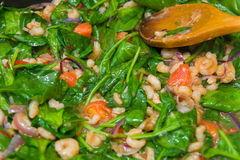 Spinach with prawns and tomato Royalty Free Stock Photography