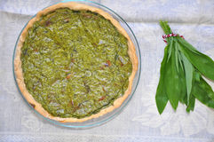 Spinach quiche Royalty Free Stock Photography