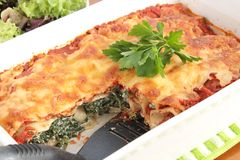 Spinach and ricotta cannelloni Royalty Free Stock Image