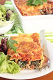 Spinach and ricotta cannelloni Royalty Free Stock Photos