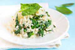 Spinach risotto Stock Image