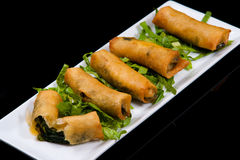 Spinach Rolls Stock Images