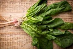 Spinach. Stock Photos