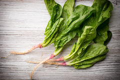 Spinach. Royalty Free Stock Photo