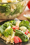 Spinach and rotini pasta salad Royalty Free Stock Photos