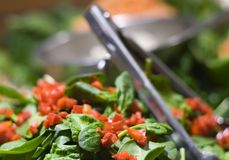 Spinach Salad. Fresh spinach salad with red peppers Stock Photography
