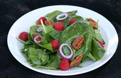 Spinach Salad on White Plate. Spinach salad with pecans, raspberries and red onions Stock Image